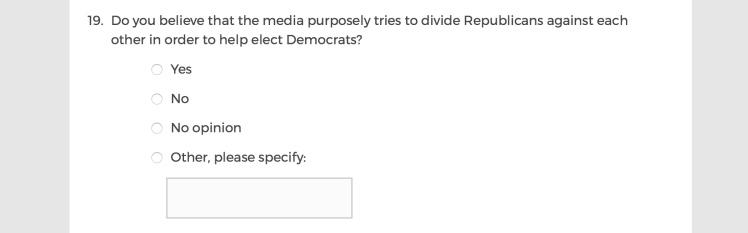 Mainstream Media Accountability Survey -- Question 19